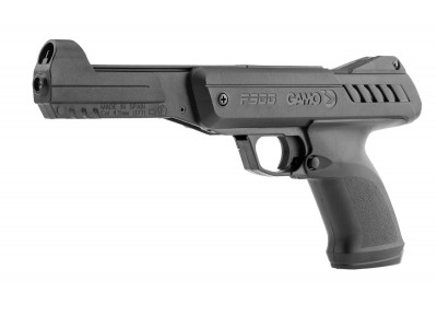 PACK Pistolet à plombs GAMO P900 IGT