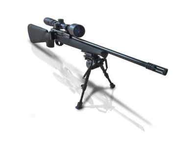 Kit carabine ISSC SPA 22LR TACTICAL