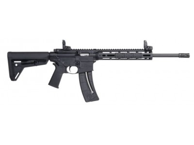 CARABINE SMITH & WESSON MP15-22 SPORT MOE SL